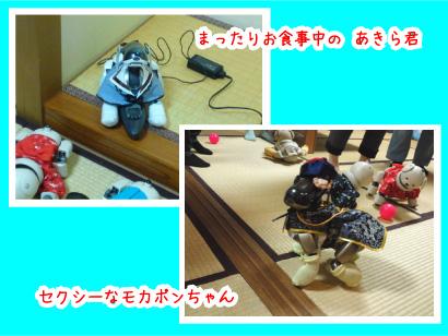 AIBOちゃん-1.jpg