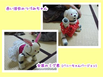 AIBOちゃん-2.jpg