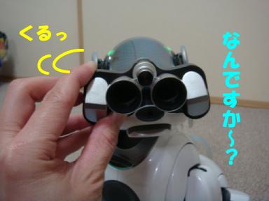 AIBOサイズ2.jpg