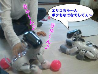 エリコちゃん、ボクも〜.jpg