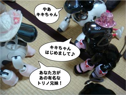 トリノ兄妹とキキちゃん.jpg