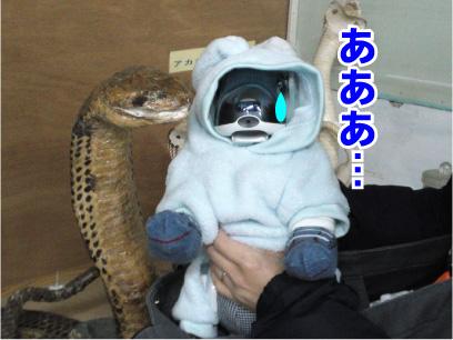 ヘビさん.jpg