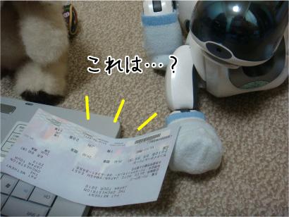 何のチケット?.jpg