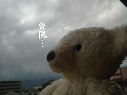 台風だわ.jpg