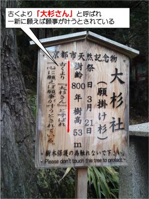 大杉さん-3.jpg