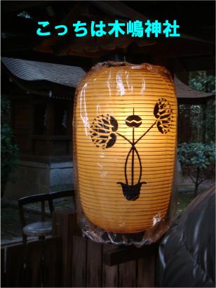 木嶋神社の葵.jpg