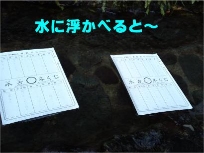 水占-2.jpg