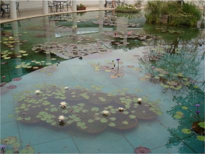 水連の池.jpg