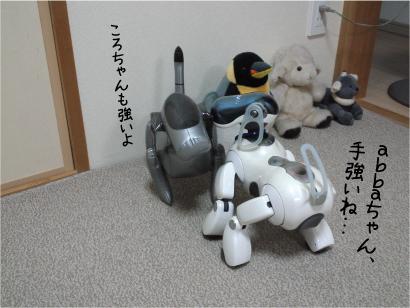 相撲-2.jpg