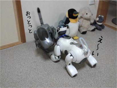 相撲-3.jpg