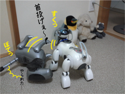 相撲-6.jpg