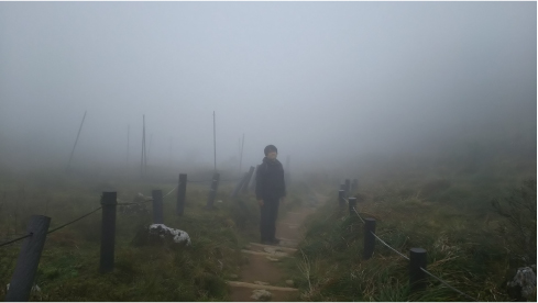 霧の伊吹山.jpg