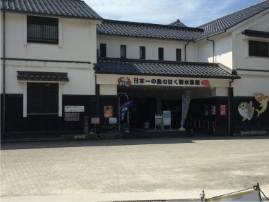 魚の剥製水族館.jpg