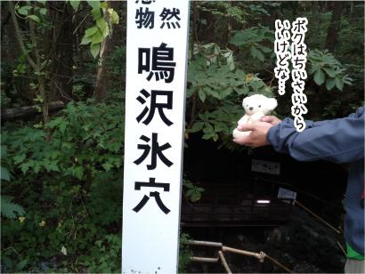 鳴沢氷穴-4.jpg