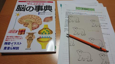 お勉強中.png