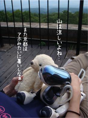 寛ぐおふたり.jpg